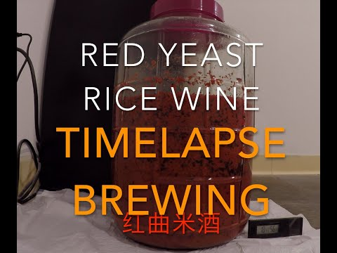timelapse-brewing-红曲米酒-red-yeast-rice-wine