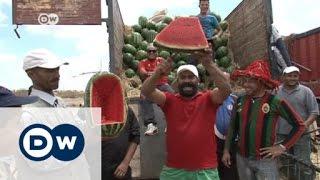 البطيخ المغربي يشهد إقبالاً في أوروبا | الجورنال