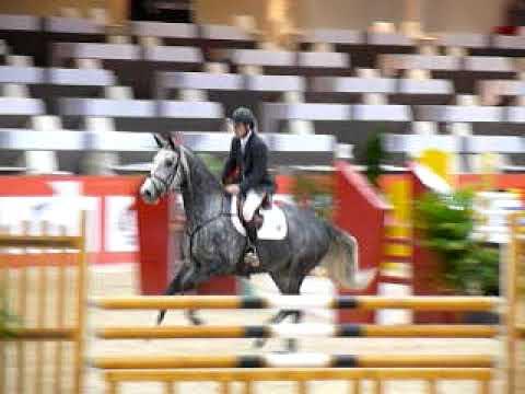 ♥ Roquebrune Latour- jumping horse  by Calato