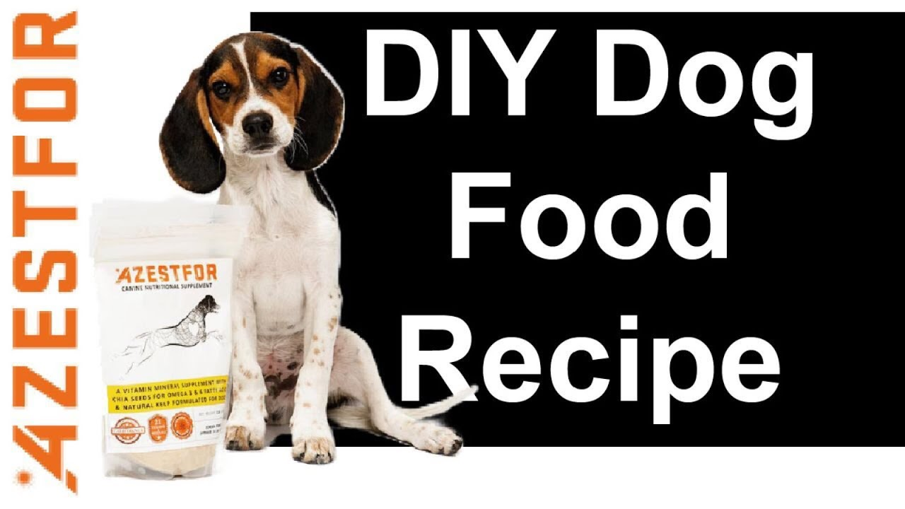 How to make homemade dog food recipes grain free ingredients how to make homemade dog food recipes grain free ingredients venison kale potato forumfinder Image collections