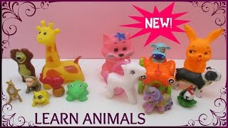 Gambar cover Watch and Learn Animals Let Us Separate WILD from DOMESTIC Animals Video for Preschool Kids