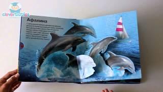 Азбукварик. Живая книга океана. Видео-обзор(Живая книга океана - Книга из серии Наш удивительный мир издательства Азбукварик (Белфакс) Видео-обзор от..., 2014-05-05T08:27:45.000Z)