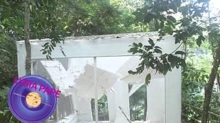 Baixar 29ª Bienal de São Paulo - Perfil Lygia Pape