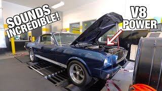 homepage tile video photo for 351 Swapped 65' Mustang Hits the DYNO! (How Much Power does it make?)