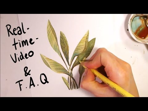 Painting a Random Watercolor Plant [REALTIME] and answering questions about style, colors...