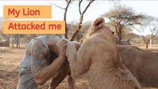 My Lion attacked me 😱😱  Dean Schneider