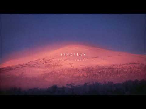 Jaden Smith x Conrad II Type Beat - Spectrum (Prod  by Wonderlust)