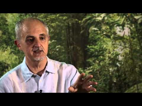 CIFOR's Robert Nasi on Sentinel Landscapes