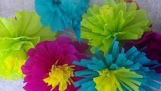 6 Flores dia de Muertos