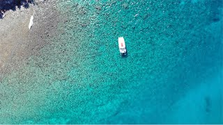 Scuba Diving in the Caribbean: Antigua Is the Next Great Destination