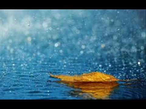Relax to the sound of rain