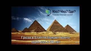Интересные факты о природе(Только на КтоЧтоГде., 2016-11-26T13:13:47.000Z)