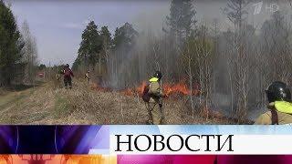 В России за сутки удалось потушить 65 природных пожаров на площади 14 с лишним тысяч гектаров.