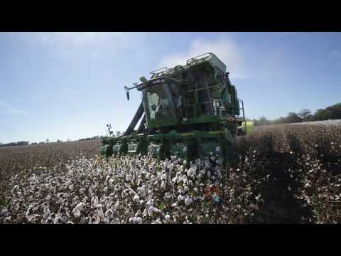 McKee Planting Company 1 on round module cotton harvester