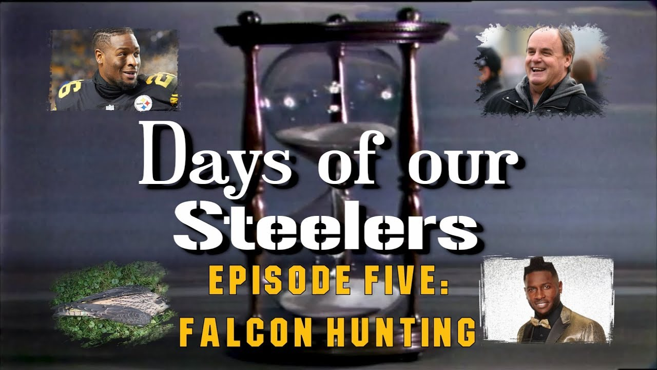 days-of-our-steelers-episode-five-falcon-hunting