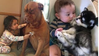 Cutest cats, dogs and baby in The world 🌎 | Supper funniest pets | Animal Planet Ever #9