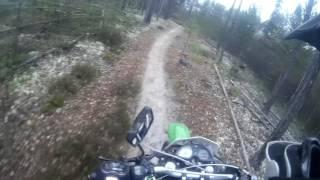 Чем дальше в лес #4