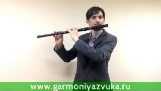 Третий ВИДЕО УРОК по игре на Ирландской поперечной флейте в Ре