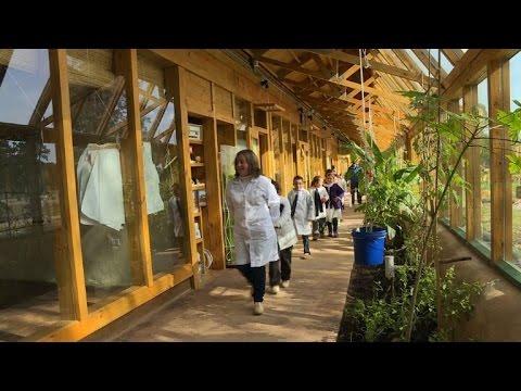 In Uruguay, green school