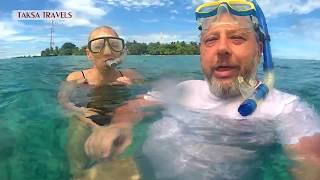 АКУЛЫ НА МАЛЬДИВАХ 2018 пляж (риф) ОСТРОВ РАСДУ (видео рыбы акулы) ТУР МАЛЬДИВЫ отдых самостоятельно