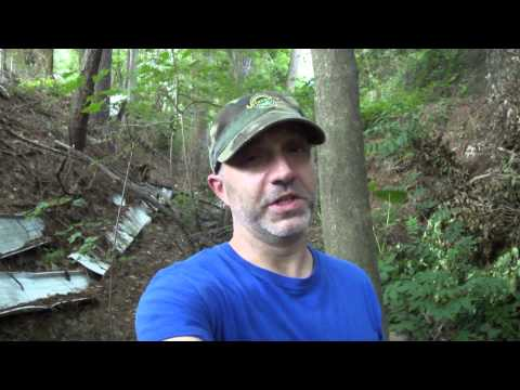 Creek Collecting in South Carolina and Fossil Hunting Q & A