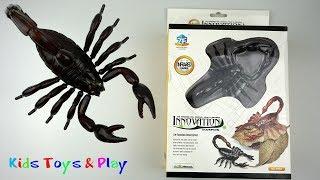 Kids Toys Scorpion - Animal Toys