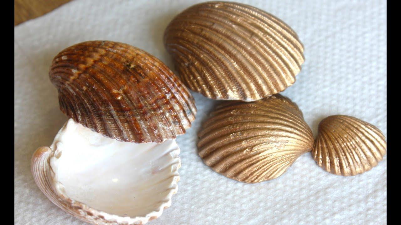 C mo se limpian las conchas de la playa youtube - Como hacer conchas finas ...