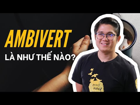 Ambivert - Bất Kì Ai Cũng Nên Cố Gắng Trở Thành Kiểu Người Này!   Huynh Duy Khuong