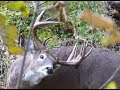 I Draw Down on a Giant Buck, He Spots Me, Need One More Step, SLOCK!