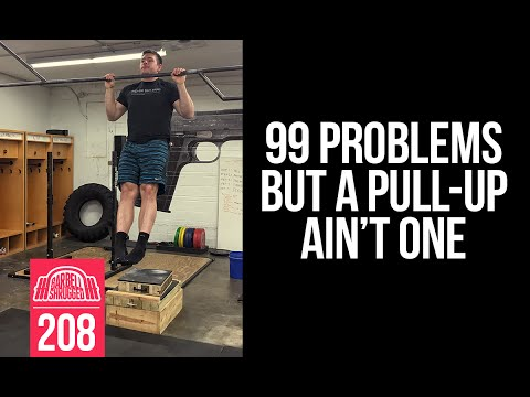 99 Problems But A Pull-Up Ain't One - 208