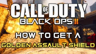 Black Ops 2 Tips - How To Get a Gold Assault Shield (Camo Unlock Tutorial)