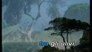 Mediterraneo Mango Karaoke Ischia