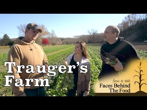 Trauger's Farm Market, Kintnersville, PA - Farm to Table: FBTF | Ep. 3
