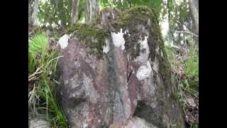 兵庫県のある山に上りました。地中の構造物を調べる探知機で調べました...