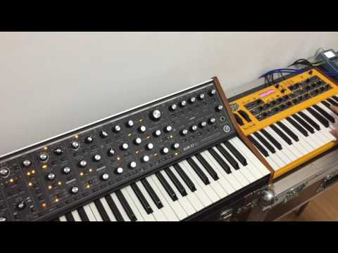 Synth Jam 43: Novation Circuit, Moog Sub 37, DSI Mopho Keyboard & Arturia Microbrute