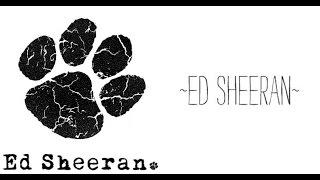 SHAPE OF YOU COVER SONG - THANGAME ft ED SHEERAN CARPOOL KAROAKE