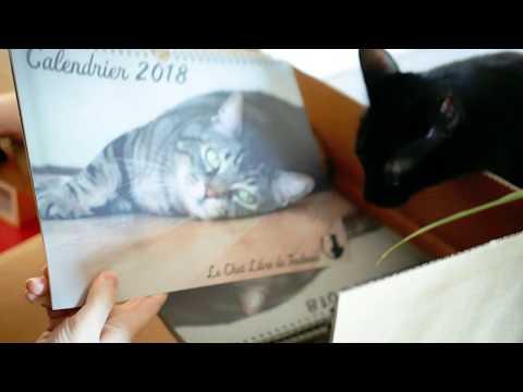 Le Calendrier 2018 Du Chat Libre De Toulouse Est Arrivé !