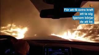 Hör familjen be när de kör genom elden i Kalifornien