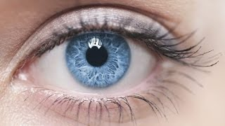 Cutting-edge Science-based Nutrients for Optimum Vision