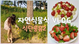 ENG 자연식물식 식단공유2 / 자연식 아이스크림 / …
