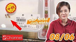 Dân mạng Việt xôn xao 2 con mực bé tí giá 4 triệu | VTV có bản quyền World Cup | GNCN 8/6