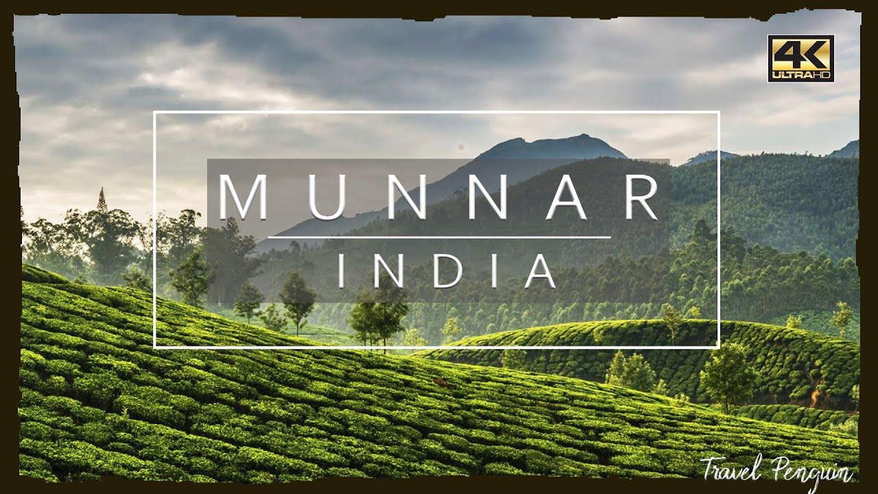 Download MUNNAR ● India 【4K】 𝐂𝐢𝐧𝐞𝐦𝐚𝐭𝐢𝐜 𝐃𝐫𝐨𝐧𝐞 [2020]