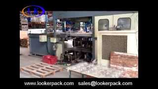 Fully automatic plastic blister container clamshell making machine
