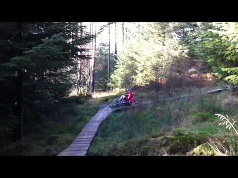 Mountain Biking in Grizedale Forest
