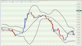 Forex Trading -  The Most Important Rule of Algo Trading