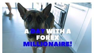 A Day In The Life with a Forex Millionaire- Berto Delvanicci #LOF #lionsofforex #ricky gutierrez