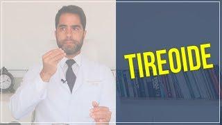 Hábitos que podem prejudicar o funcionamento da tireoide