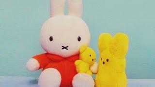 Nijntje liedje - lief klein konijntje (refrein)