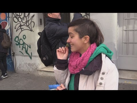 Uruguay quiere vencer al narcotráfico con el inicio de venta de marihuana en farmacias