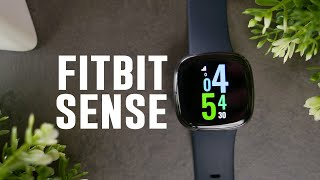 Fitbit Sense Review, Is it Any Good?